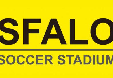 飛龍球場 SFALO Soccer St...