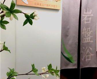 清心岩盤浴專門店 Qing Xin St...